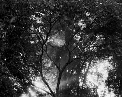 slantphoto33