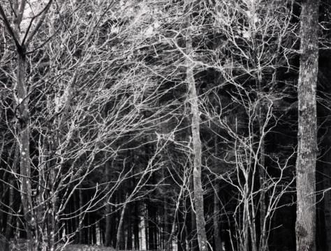 Paul-Gaffney_Perigee-Polaroids-4-web1