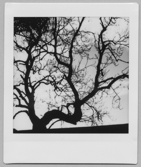 Scan_20200728 (12)
